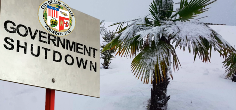 Los Angeles Government Shuts Down Over 50 Degree Weather